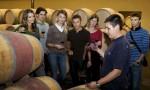 知味葡萄酒留学指南(五):法国葡萄酒职业本科项目介绍