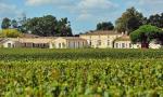 骑士庄园 Domaine de Chevalier :白葡萄酒风华绝代