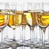 探索意大利的杰出干白葡萄酒
