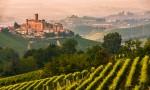 意大利专题品鉴会:杰出非单一园巴罗洛的风采