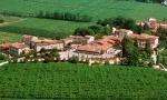 【视频】意大利Amarone顶级名庄Masi庄园品鉴会:风干葡萄的精髓
