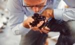 风土到底如何影响葡萄品种?Biodyvin副主席给出了他的解答