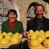 美食纪录片《舌尖上的中国》