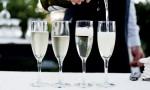 杰西斯·罗宾逊:像勃艮第一样崛起的酒农香槟