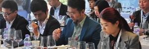 知味葡萄酒课程的五大优势