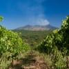 【上海】地中海的勃艮第—意大利西西里岛Etna专题品鉴会