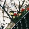美食与浪漫——小餐厅里的巴黎