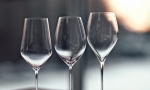 怎样像行家一样选酒杯?