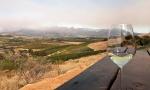 施晔:我在南非酿酒的日子(大结局)