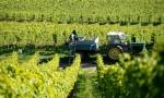 【视频】杰西斯·罗宾逊德国葡萄酒大师班:德国雷司令和黑皮诺的顶级风土