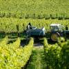 杰西斯·罗宾逊德国葡萄酒大师班:德国雷司令和黑皮诺的顶级风土
