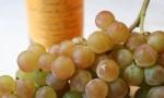 如果你想让一个人爱上葡萄酒,就请TA喝这个