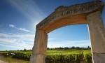 主编午后勃艮第课程:Gevrey-Chambertin村和两大Montrachet村