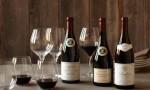 杰西斯·罗宾逊:与日俱增的勃艮第酒商