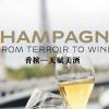 中文版香槟官方手册下载