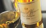 滴金酒庄 Château d'Yquem 宣布放弃酿制2012年份酒