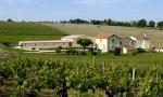 旅加华侨收购波尔多卢卡酒庄 Château Lucas