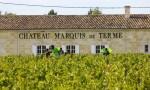 深入波尔多列级名庄:德达侯爵酒庄 Château Marquis de Terme