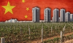 国际大师眼中的中国葡萄酒市场