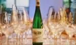 这里有一堂诚意满满的德国葡萄酒官方认证课程