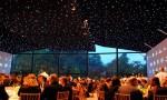 星空下的盛宴:记木桐晚宴(二)