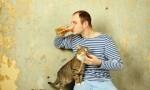 一个人喝酒可以有多孤单?