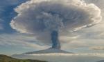 西西里的魅力,Etna火山下的单一园与百年老藤