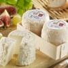 知味奶酪指南:山羊奶酪