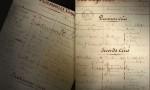 五大名庄背后的1855分级