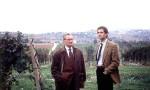 意大利低调产区的高调酒庄