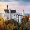 知味风土复兴8月主题:德国 · 奥地利的葡萄酒