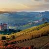风土与传承: 皮埃蒙特酒乡成为世界遗产