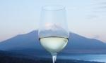 探秘日本甲州葡萄酒
