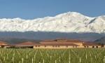 安第斯山之魂(上):智利珍酿大盘点