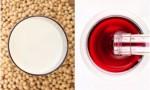 葡萄酒和豆浆,对身体到底有没有好处?