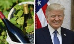 勃艮第送给特朗普的两瓶酒,究竟什么来头?