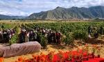 那些产自全世界遥远之地的葡萄酒,你不想去看一次吗?