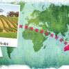 北京|醉美澳洲:Best Australia 澳大利亚顶级酒款品鉴会