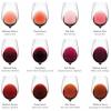 通过颜色就能判断葡萄酒的真假?看完这篇你也可以